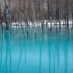 Biei Blue Lake 青い池